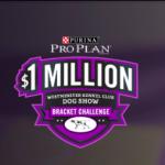 Enter to Win $1,000,000 DogShowBracket.com Westminster Kennel Sweepstakes