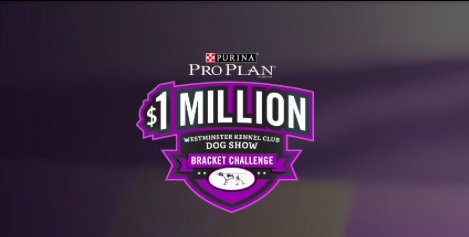 Enter to Win $1,000,000 DogShowBracket.com Westminster Kennel Sweepstakes
